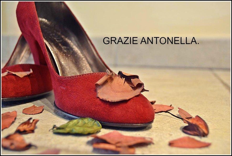 Antonella_shoesontheroad